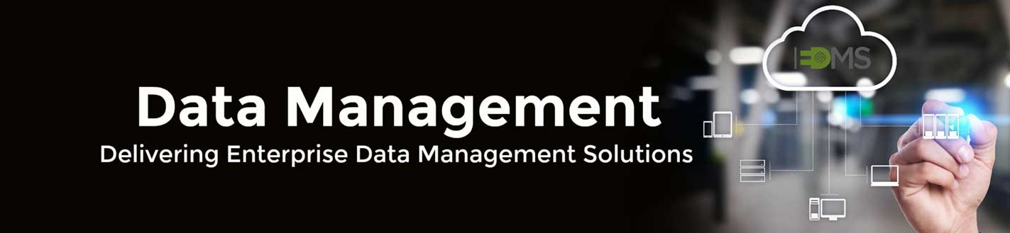 Data Management, Enterprise Services, Business Decisions